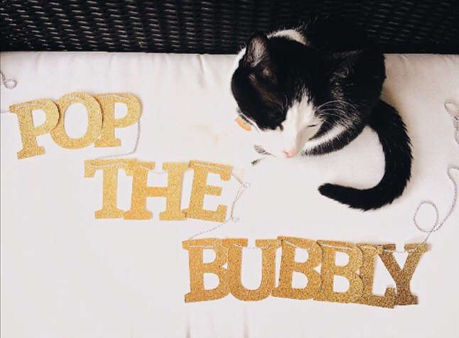 pop the bubbly banner by thecouturekitten