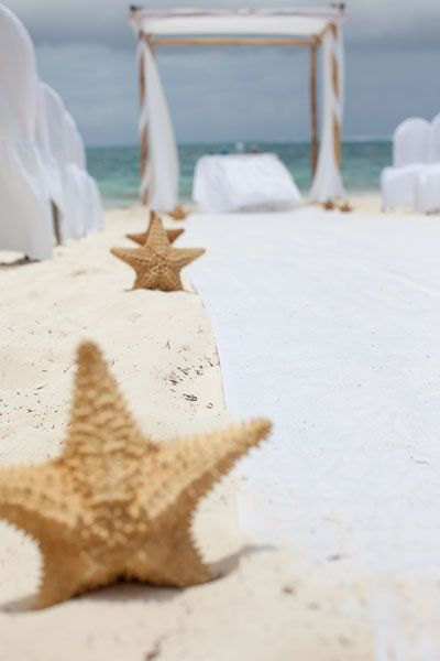starfish down the aisle