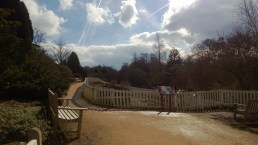 Sunny Skies at Golden Acre Park