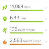 Best numbers yet on my FitBit!