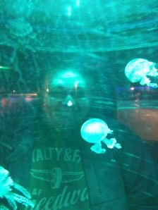 Cameron and the Jellyfish at the Sea Life Centre in Scarborough