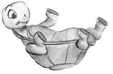 turtle-on-back
