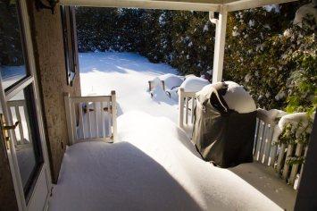 Backyard in Malvern, PA.