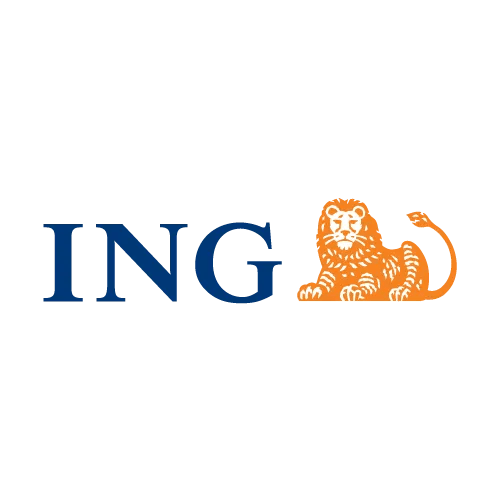 ING Expat Leadership Coaching