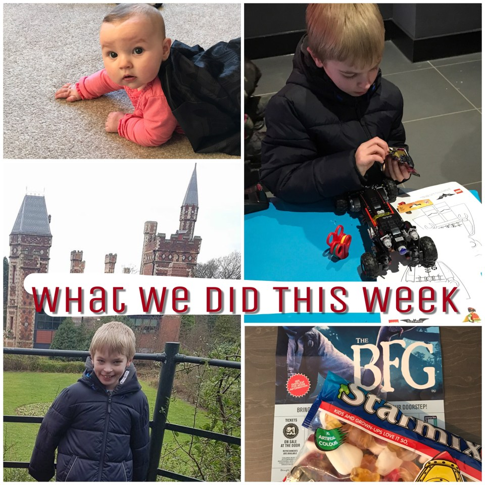 What We Did This Week