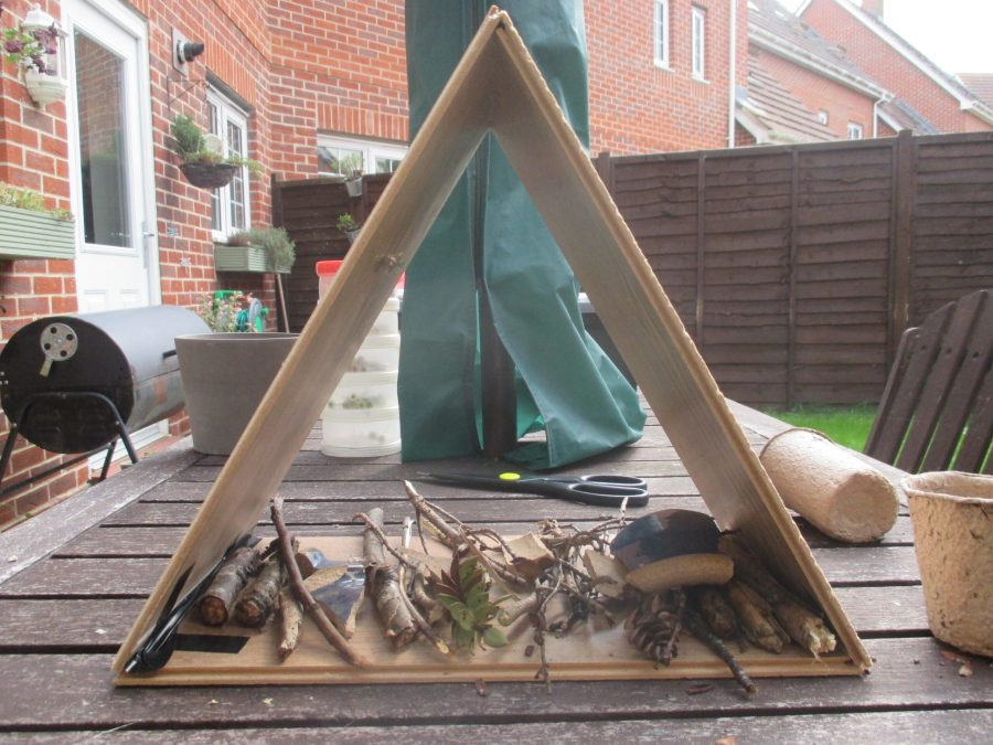 building a bughouse using twigs and materials from around the home