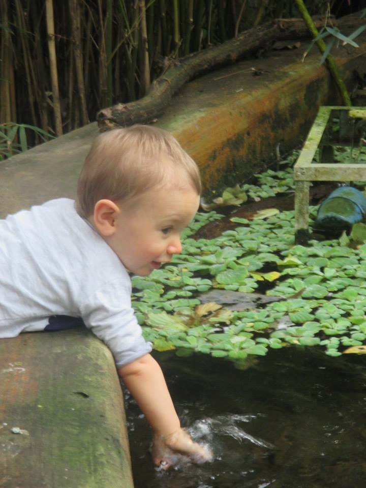 Jake with his hand in the pond