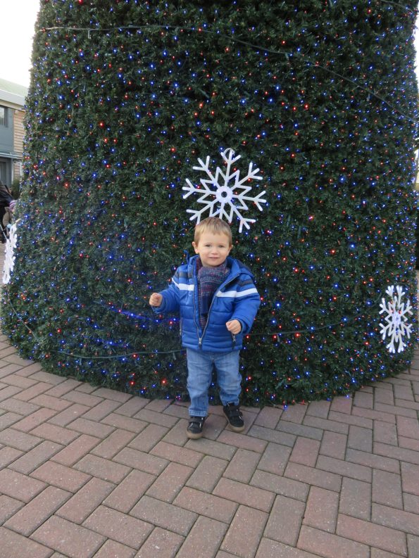 Jake in front of a giant Christmas tree