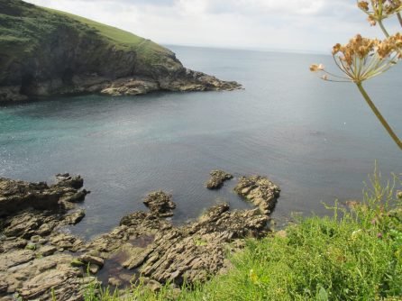 coast at Port Isaac