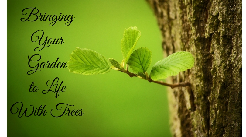 bringing you garden to life with trees