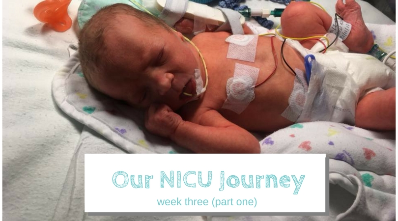 nicu journey week three