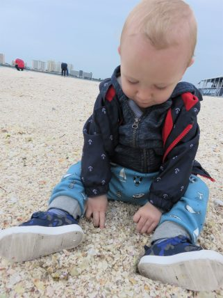 william looking at the shells on the beach