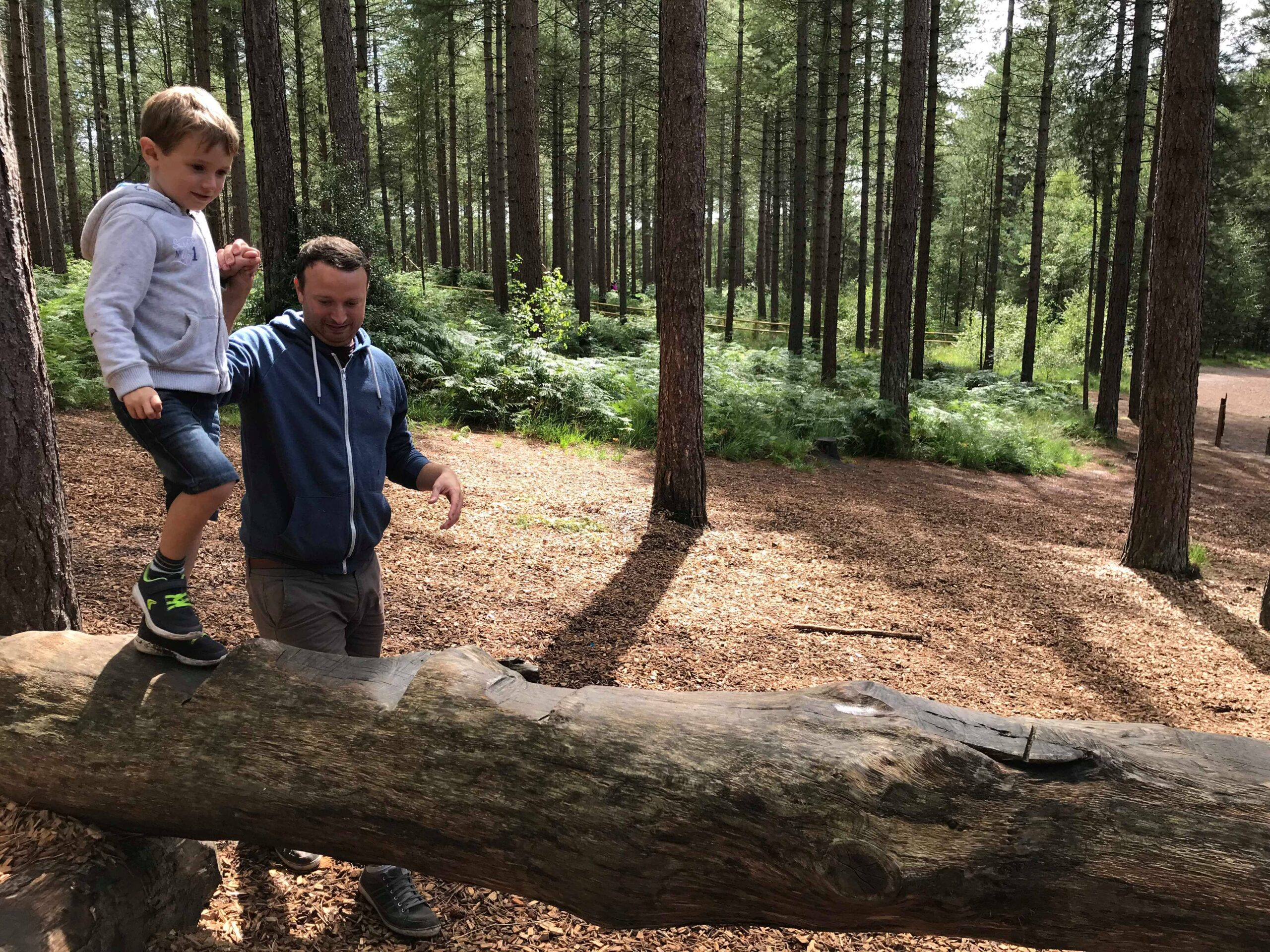 dad holding Jake's hand to balance on a log