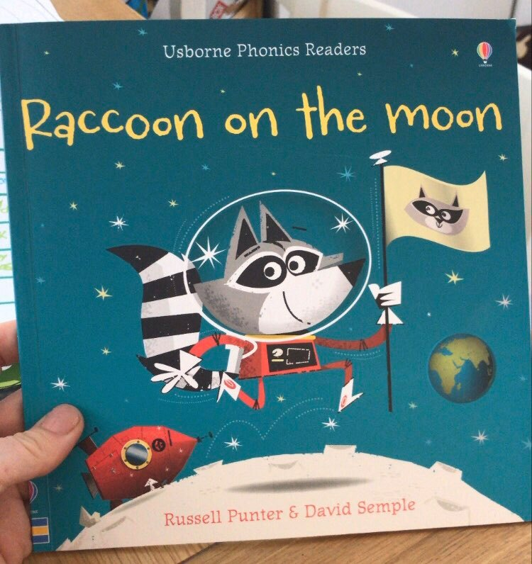 raccoon on the moon book