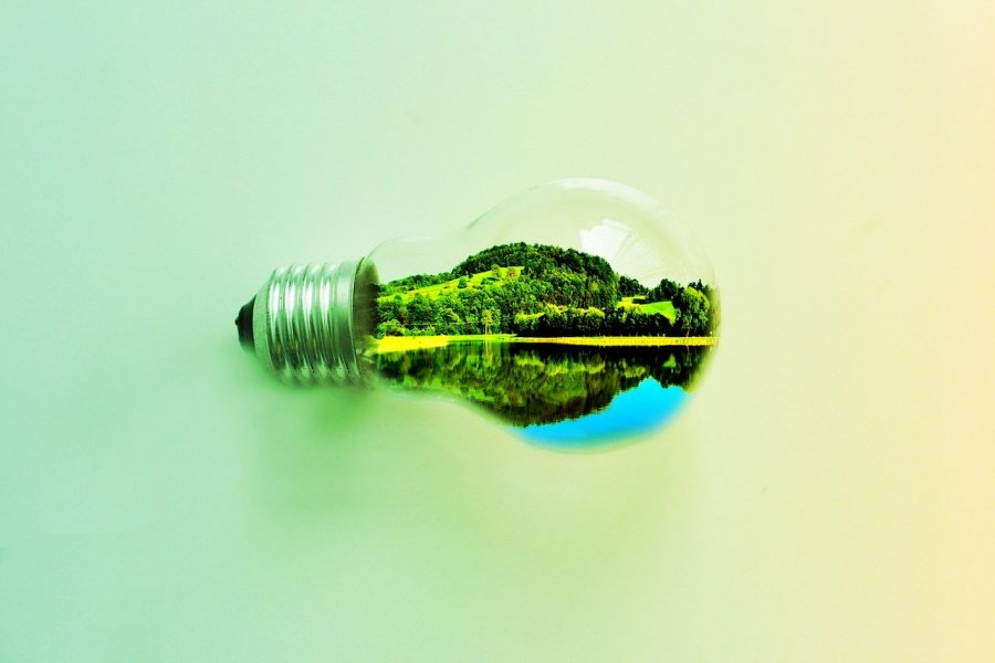 a green lightbulb