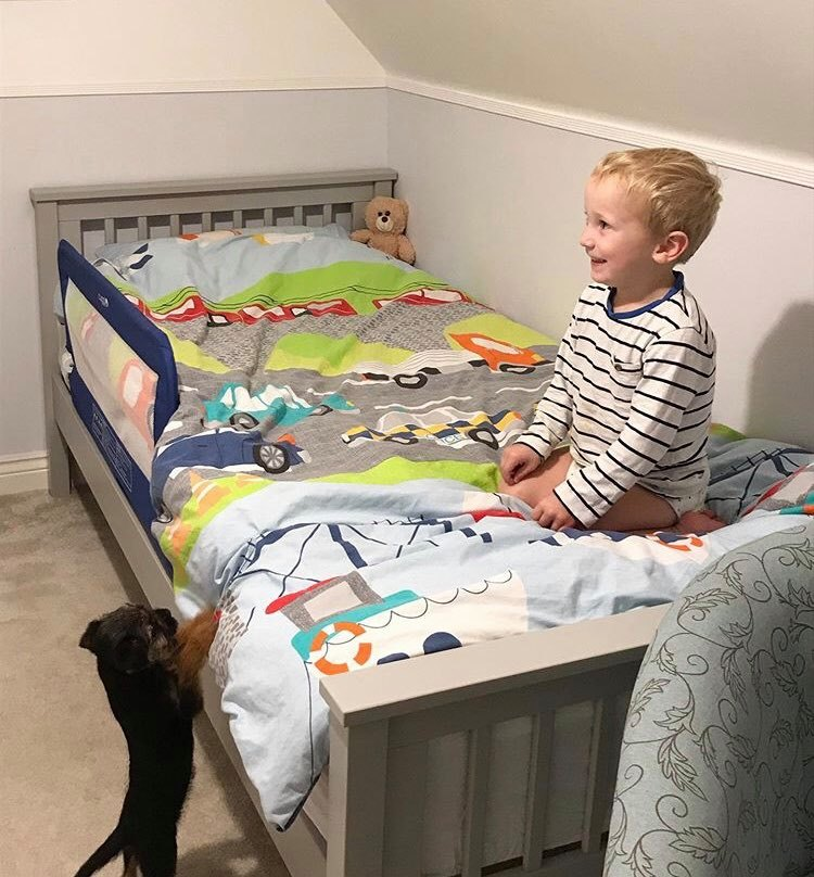 William on his new bed looking very happy with our puppy reaching up to look
