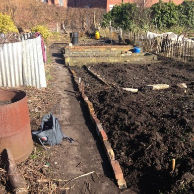 Vegetable beds edged with bricks