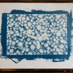 """Shibari : Cyanotype – Le tas de bois"" 24×32"