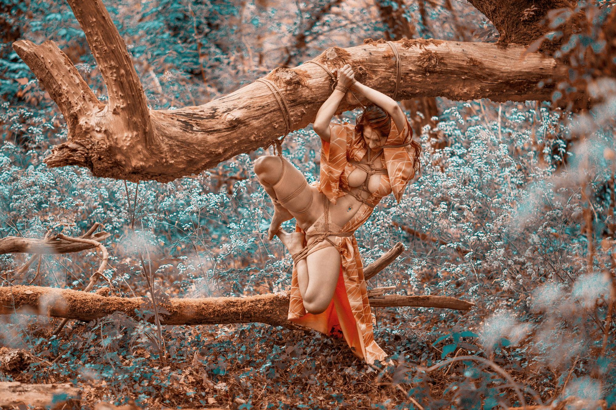 """Tirage photo: """"Shibari – Vénérable branche"""""""