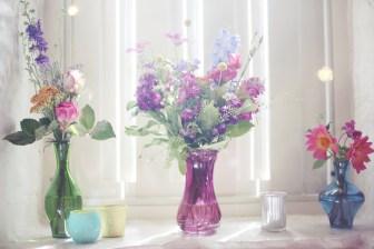 windowsill_arrangement