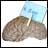 Cervello in vendita