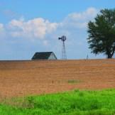 Midwest Farm - WIY