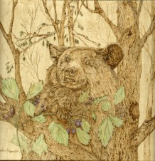 Big Bear and Berries