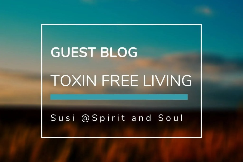 guest blog toxin free living