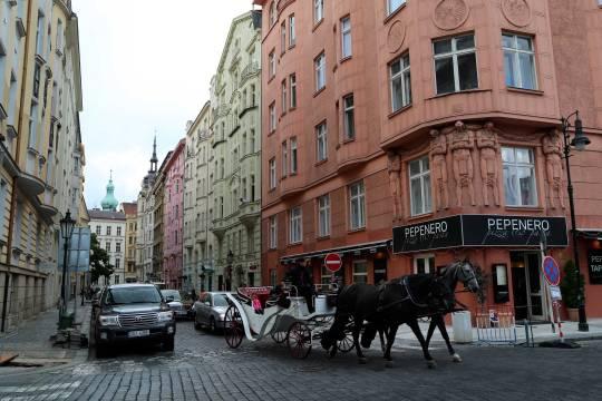 Horsey Prague