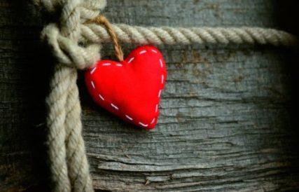 Que te vas a encontrar en Emociones con Patas un Blog de inteligencia emocional