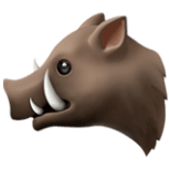 🐗 Boar Emoji — Meaning, Copy & Paste