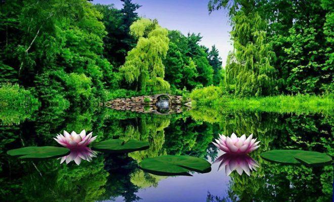 imagens-lindas-imagens-lindas-natureza-facebook-3