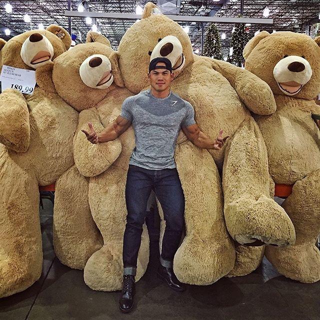 Ursos-de-Pelúcia-Gigantes44