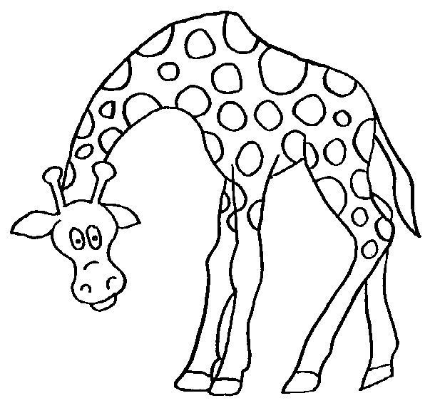 desenho-para-colorr-girafa