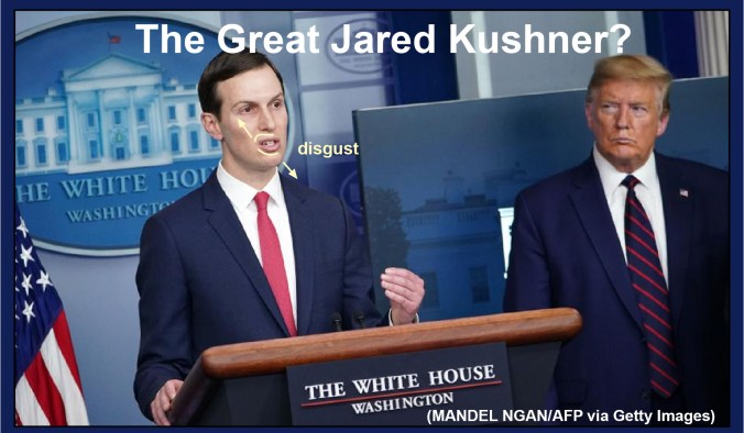 Jared Kushner's task force disgust and arrogance