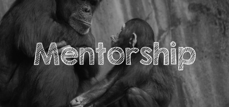 Rebroadcast #Mentorship