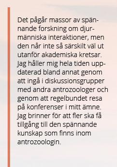 Textplattor_Forelasningar