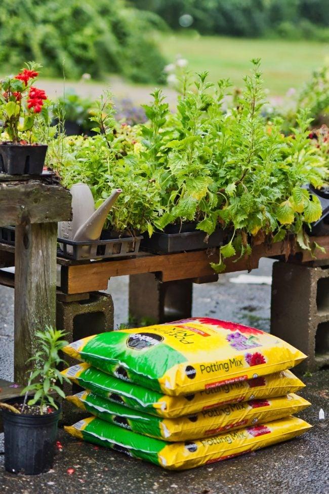 Garden Soil Vs Potting Soil The 7 Biggest Differences Bob Vila