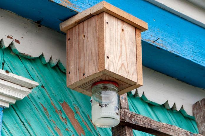 Here S How To Make A Carpenter Bee Trap Diy Guide