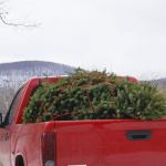 Christmas Miracle 8 Simple Fixes For All Your Tree Troubles Bob Vila
