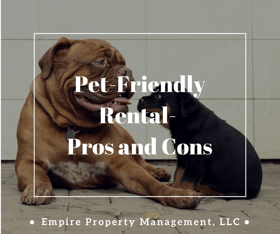 Pet Friendly Rental- Pros and Cons