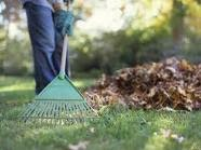 Time To Spruce Up Your Yards!
