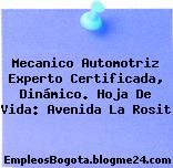 Mecanico Automotriz Experto Certificada, Dinámico. Hoja De Vida: Avenida La Rosit