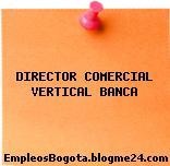 DIRECTOR COMERCIAL VERTICAL BANCA