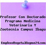 Profesor Con Doctorado Programa Medicina Veterinaria Y Zootecnia Campus Ibagu