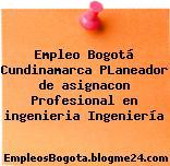 Empleo Bogotá Cundinamarca PLaneador de asignacon Profesional en ingenieria Ingeniería