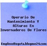 Operario De Mantenimiento Y Alturas En Invernaderos De Flores
