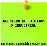 INGENIERO DE SISTEMAS O INDUSTRIAL