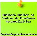 Auditora Auditor de Centros de Enseñanza Automovilsitica