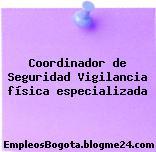 Coordinador de Seguridad Vigilancia física especializada